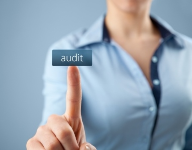 SAM 1 software compliance audit копия